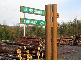 標識と貯木場